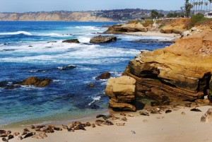 Four Beaches in San Diego for Family Recreation