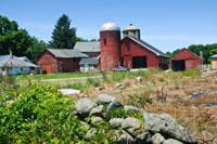 Visiting Farmington, Connecticut?