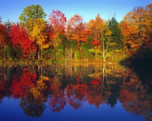Fall Foliage Driving Tours in Connecticut