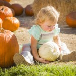 Fall Events in the Pittsburgh Area