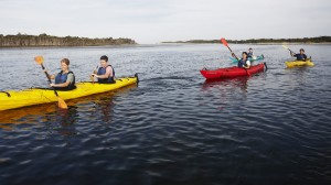 Go Canoeing, Kayaking and Rowing this Fall in Junction City