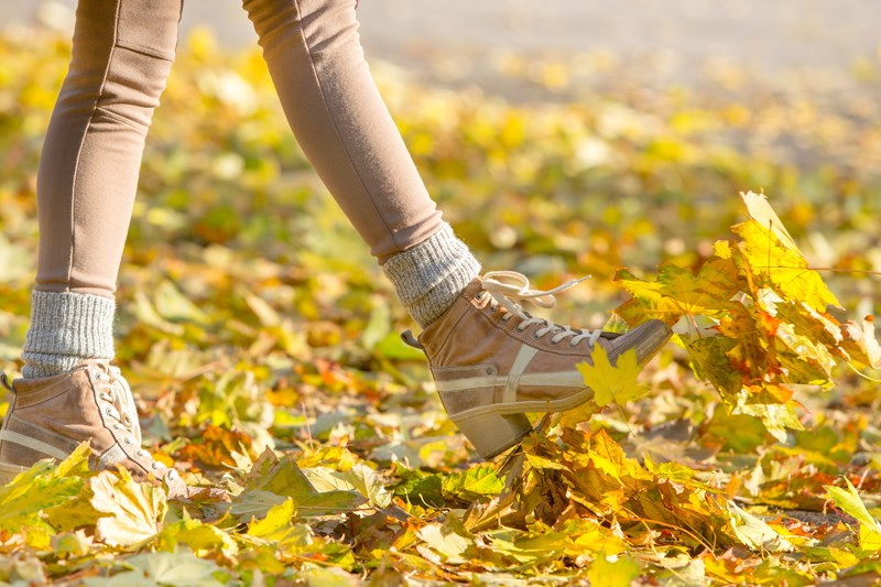 Fall Moving Tips for the Midwest | Kansas City