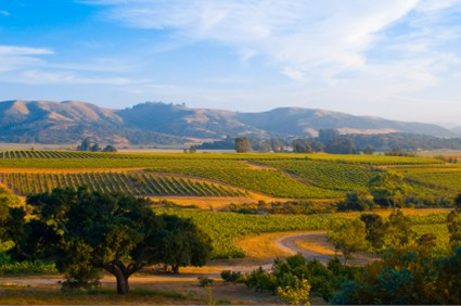 Where You Should Spend your Labor Day in Northern California
