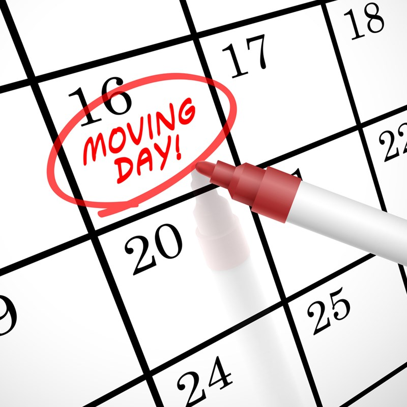 Essential Items Not to Forget on Moving Day!