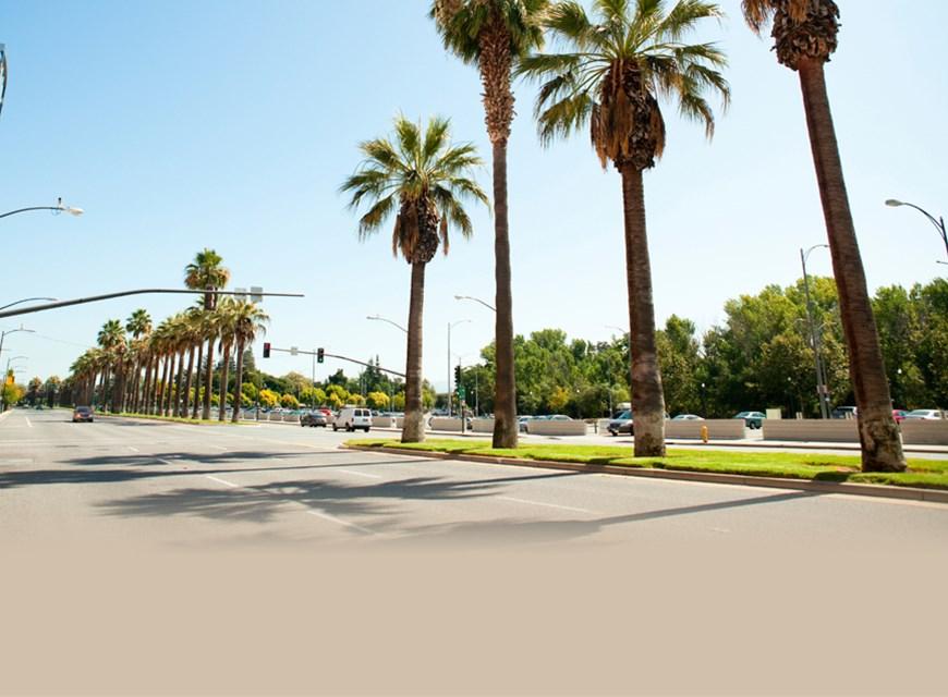 San Jose Moving Services