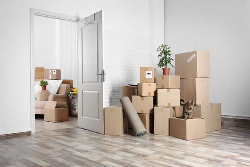 Planning A Fall Move