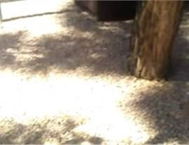 Video Testimonials Photo 24