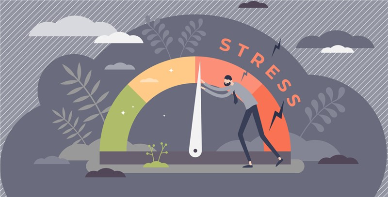 Tips on How to Reduce Stress During a Move From an Experienced Portland Long-Distance Moving Company