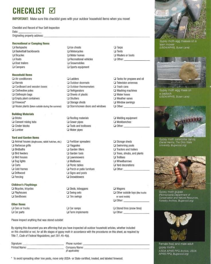 gypsy fly checklist