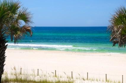 3 Big Reasons You'll Love Sarasota