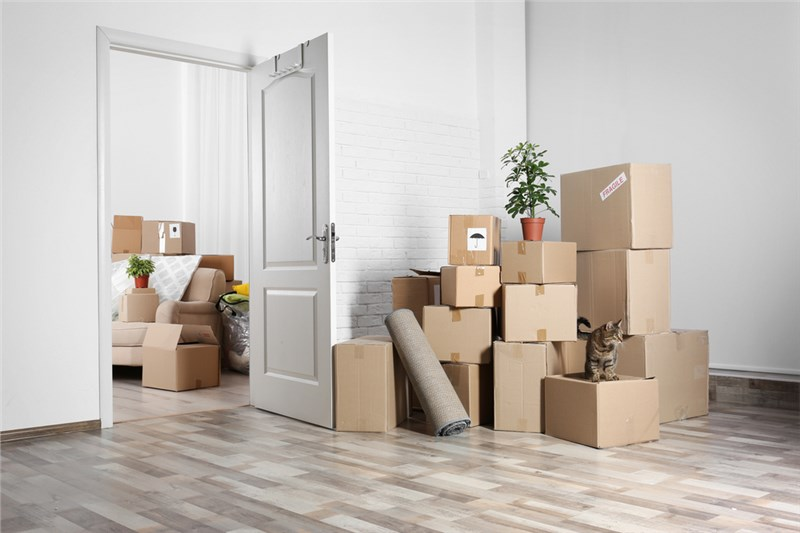 Planning for a Move - It's all About the Basics