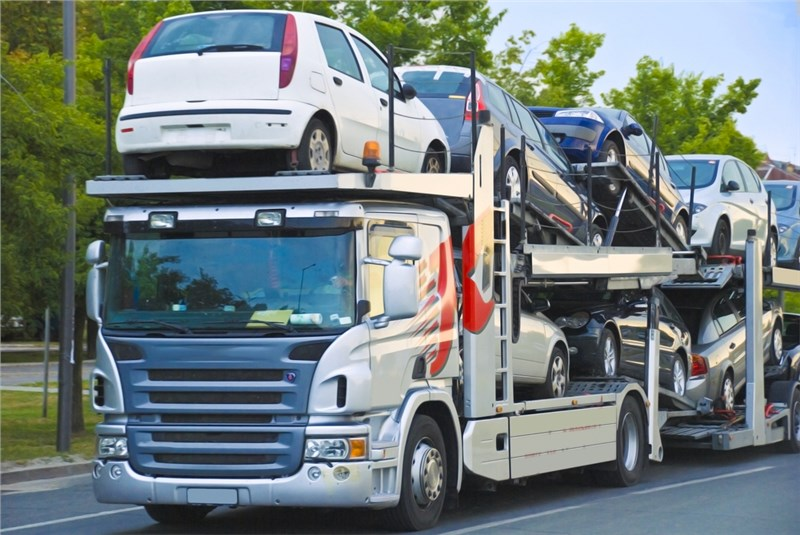 Dynamic Auto Movers, a Trusted Partner of Solomon & Sons Relocation Services
