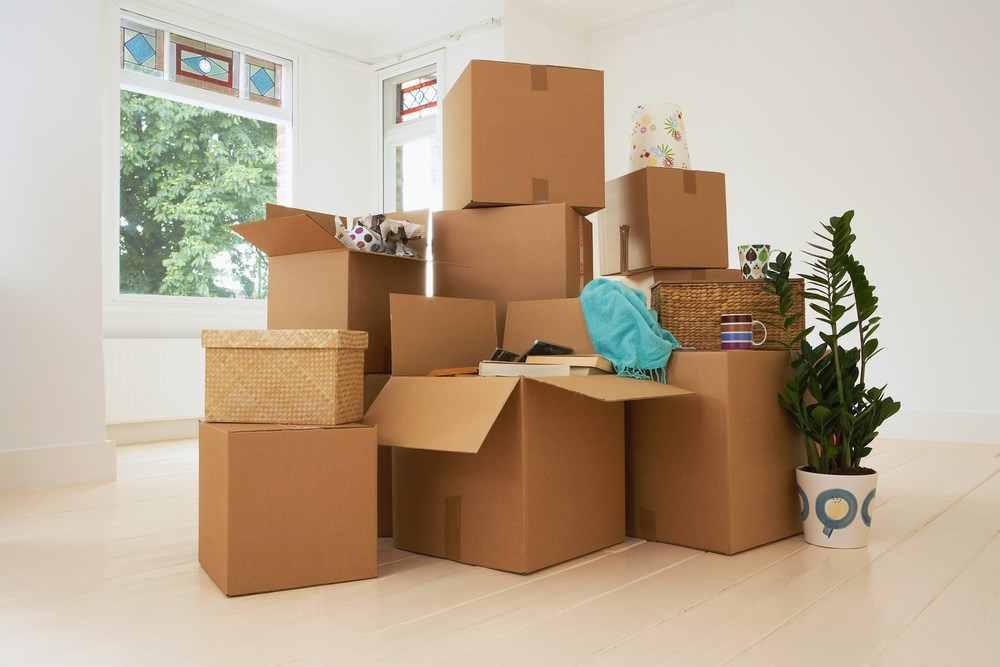 FREE Moving Boxes St Pete Moving Storage