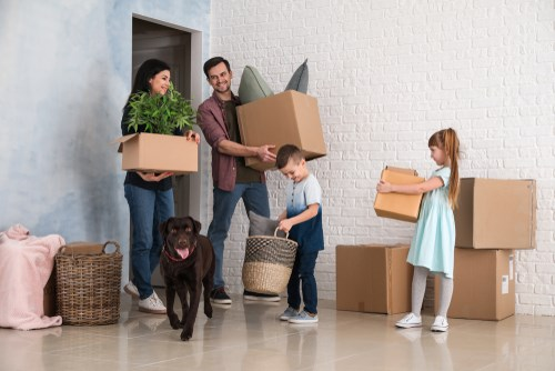 5 Tips for Moving with Pets